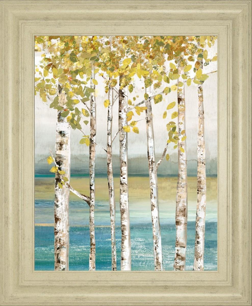 Classy Art 22 In X 26 In Morning Light Il By Michael Marcon Mirror Framed Print Wall Art Classy Art 4945mf Discount Bandit