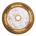 Elegant Lighting MD110D35FG Medallion Ceiling Canopy 35 in French Gold